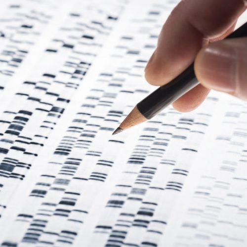 37239059 - scientists examined dna gel that is used in genetics, medicine, biology, pharma research and forensics.